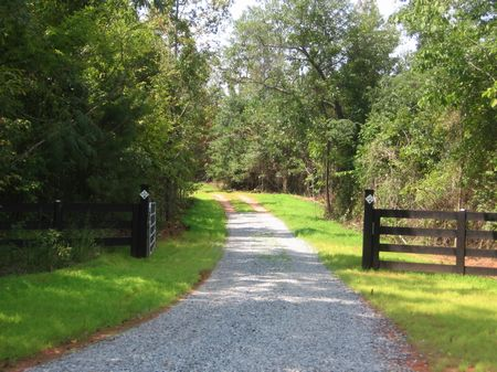 Massey Hill Farm : Gordon : Wilkinson County : Georgia