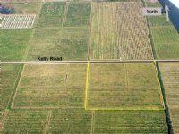 39ac Agricultural Or Homesite Tract