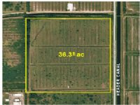 36.3 Acre Agricultural Tract