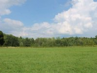 Land Near Syracuse Surveyed 12 Ac