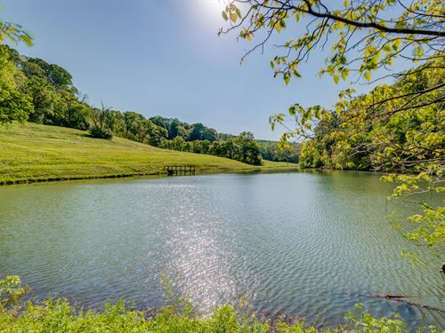175 Acres With Lake : Santa Fe : Maury County : Tennessee