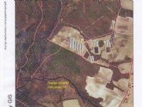 Pasture Land : Warsaw : Duplin County : North Carolina