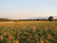 Land Auction, 440+/- Acres In 15 Tr