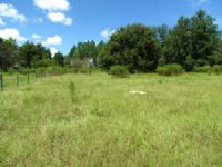 Charming 5 Acres In Brooksville