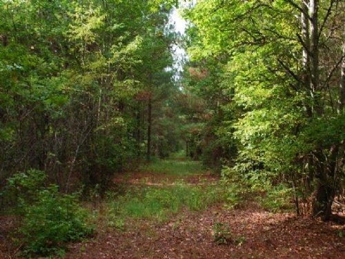 52ac Recreational Tract Jonesville : Jonesville : Union County : South Carolina