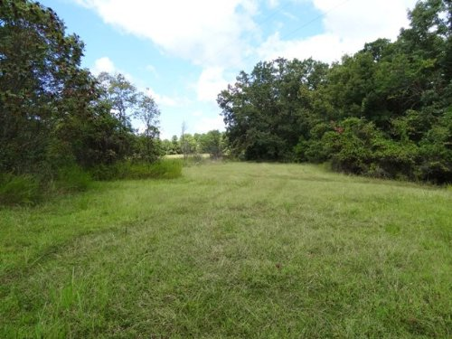 75 Ac Recreational Tract W Utilties : Prim : Cleburne County : Arkansas