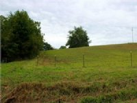 58+/- Acres Of Land At Auction