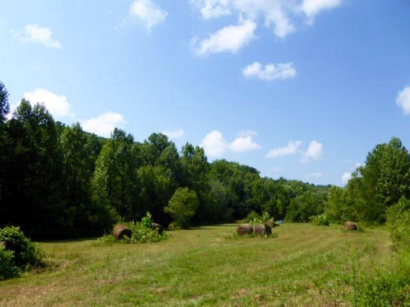 Opportunity : Farm for Sale : Clayton : Rabun County