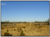 Old Dairy Tract