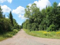 Bellaire Rd S Mls# 1090250 : Pelkie : Baraga County : Michigan