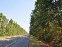 26 Acres Hwy 146 North Tract
