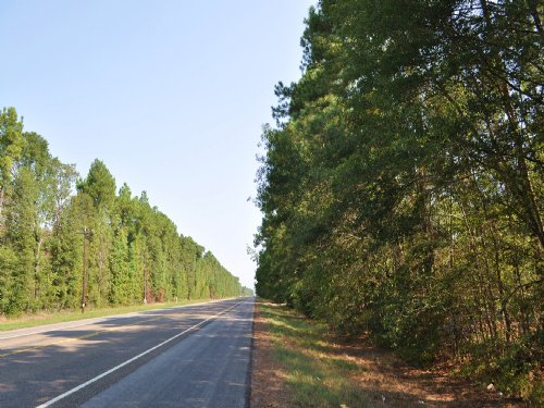 28 Acres Hwy 146 : Rye : Liberty County : Texas