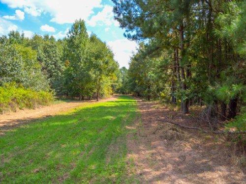 66 Acres Near Cross Anchor : Enoree : Spartanburg County : South Carolina