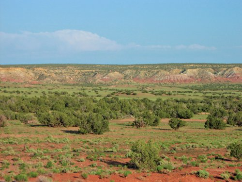 37 Acre Northern Az Ranch : St. Johns : Apache County : Arizona