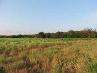 Kansas Whitetail Property
