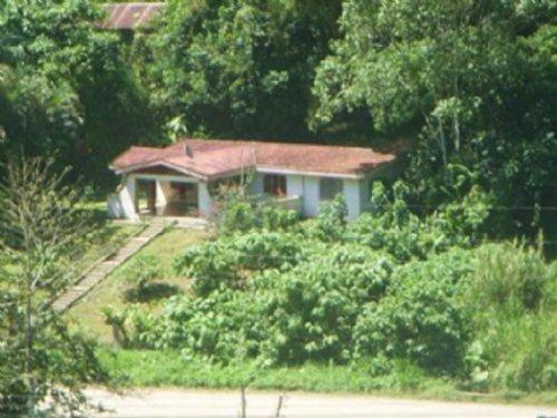 45 Acre Mt Farm - 4 Bdrm 2B House : Tuis De Turrialba : Costa Rica