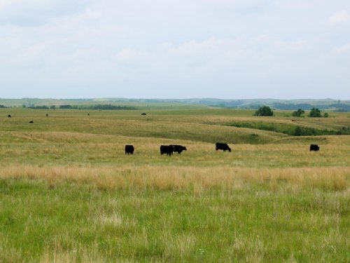 R J Ranch : Grassy Butte : McKenzie County : North Dakota