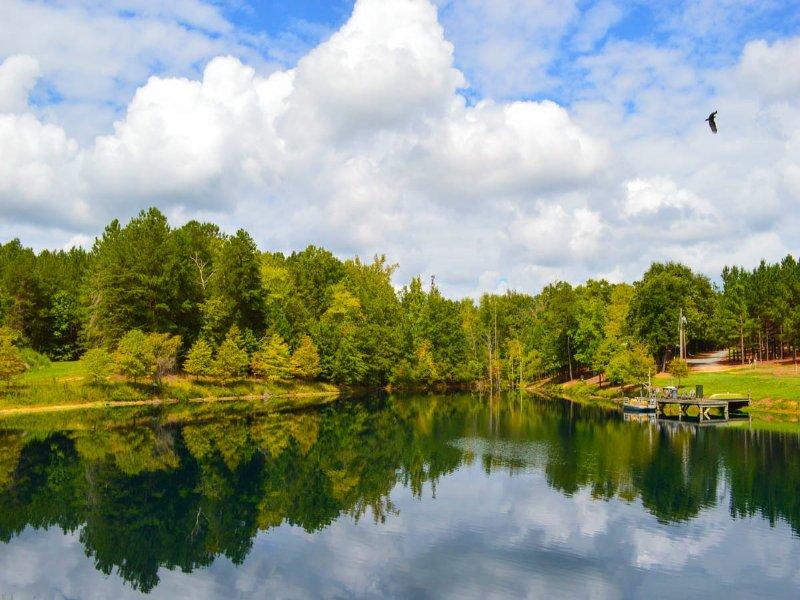 375 Acre Plantation : Union : Union County : South Carolina