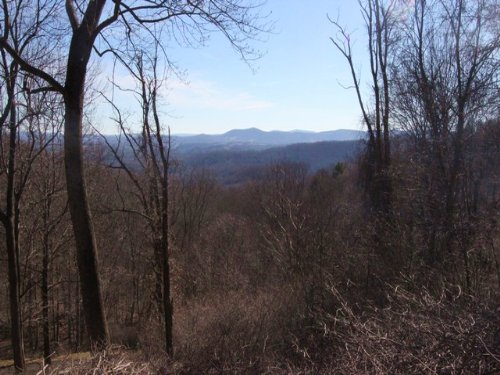 Lot # 117 Blue Ridge Mountain Tract : Independence : Grayson County : Virginia