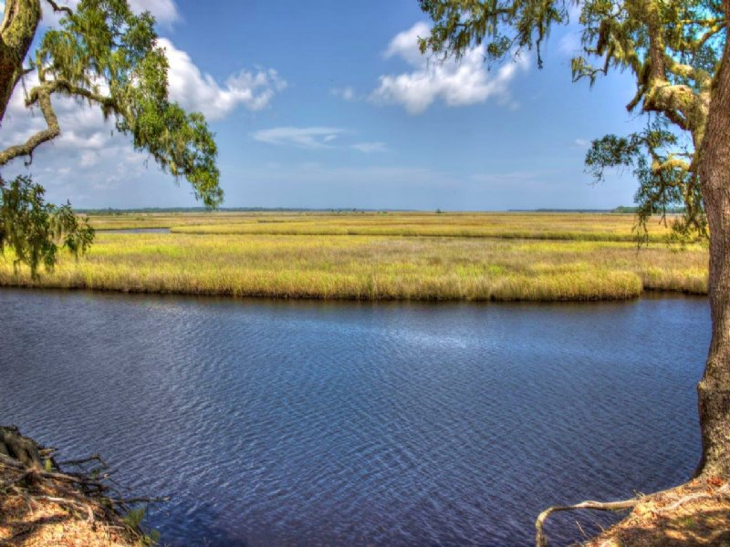 Bluffs Of St. Teresa : St. Teresa : Franklin County : Florida