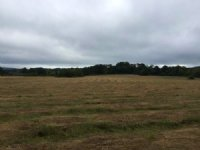 26.54 +/- Ac Us Hwy 411 Frontage