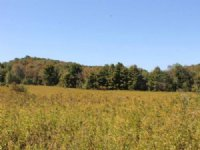 Country Building Lot 9 Acres