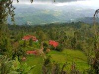 27 Ac Working Farm, 2 Houses : Turrialba De Cartago : Costa Rica