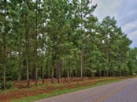5 Acre Lot Close To Lake Oconee : Buckhead : Putnam County : Georgia