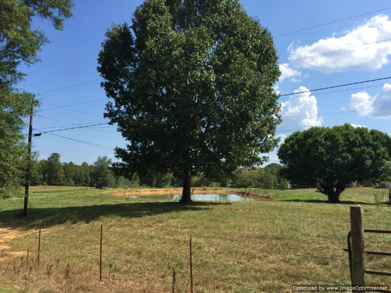 13 Ac Family Farm W/ Mobile Home : Wesson : Copiah County : Mississippi