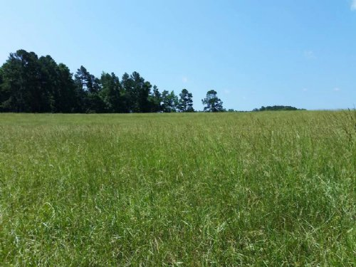65+/- Acres Pastureland For Sale : Franklin : Heard County : Georgia