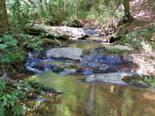 Land For Sale - 88+/- Acres : Woodland : Randolph County : Alabama