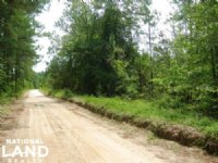 Wagener Residential Homesite With T