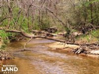 Recreational Timberland With Mounta