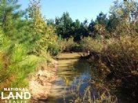 Hemingway Hunting & Recreational Tr