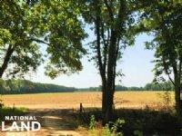 Recreational Farmland