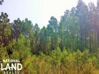 Rural Timber Investment