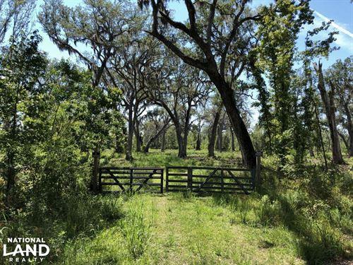 Green Swamp Road Tract : Brunswick : Glynn County : Georgia
