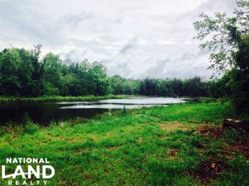 Sylvania Recreational Homesite : Sylvania : Screven County : Georgia