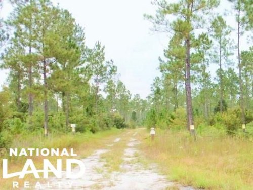 National Forest Recreational Land : Sanderson : Baker County : Florida