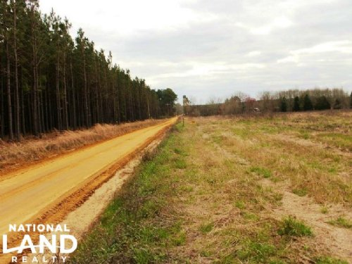 Lyons Farm Land : Lyons : Toombs County : Georgia