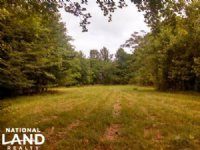 Hunting And Timber Investment : Hayneville : Lowndes County : Alabama