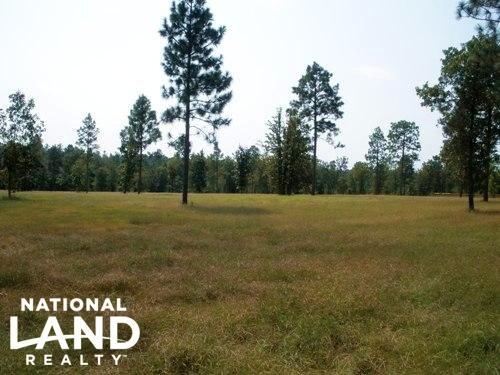 18.32 Acre Hound Hollow Equestrian : Camden : Kershaw County : South Carolina