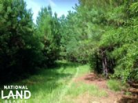 Investment & Recreation Opportunity : Alpine : Talladega County : Alabama