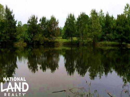 Recreational Homesite With Pond : Troy : Pike County : Alabama