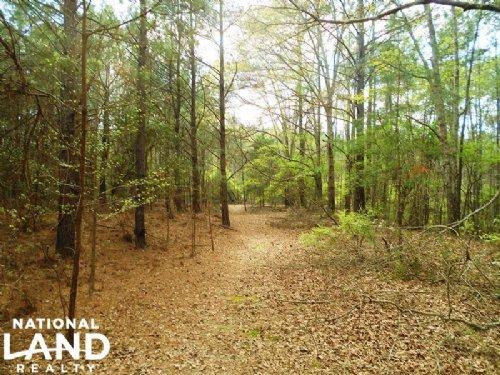 Hunting & Recreational Homesite : Troy : Pike County : Alabama