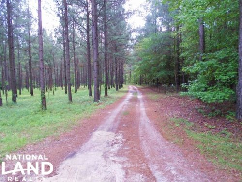 Recreational Home & Timber Investme : Troy : Pike County : Alabama