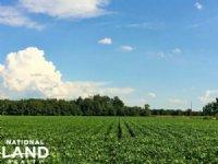 Farming & Recreational Land