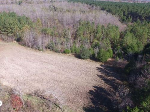Big Swamp Creek : Letohatchee : Lowndes County : Alabama