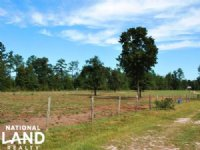 Aiken Mini Farm Homesite