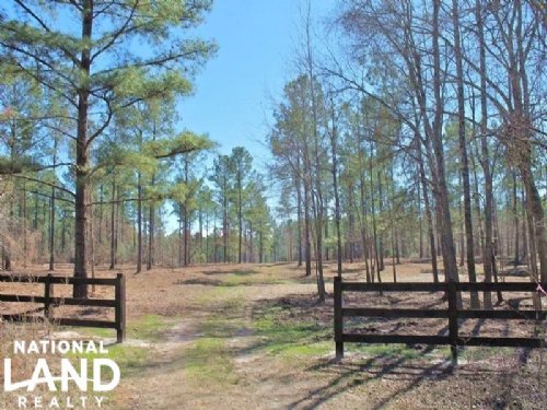 300 Acre Recreation And Timber Inve : Tuskegee : Macon County : Alabama